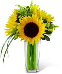 The FTD Sunshine Daydream Bouquet from Pennycrest Floral in Archbold, OH