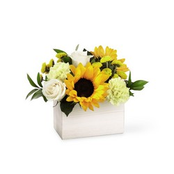 The FTD Sweet as Lemonade Bouquet from Pennycrest Floral in Archbold, OH